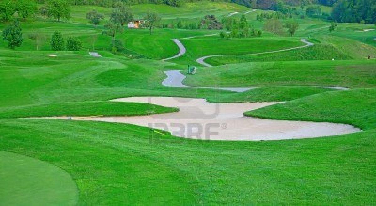 Golf report latino tipos de cesped - Tipos de cesped ...