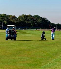 63339_aunque_no_lo_parezca__el_golf_puede_ser_un_deporte_de_riesgo___foto__pixabay_