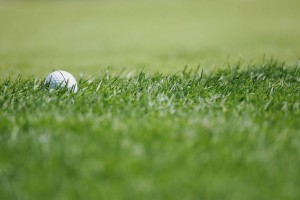 golf-ball-in-rough-570d0b3a3df78c7d9e324c73